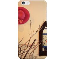 decoration iPhone Case/Skin