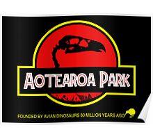Aotearoa Park (Haast's Eagle skull) Poster