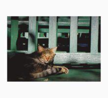 sleepy cat by gzmguvenc89