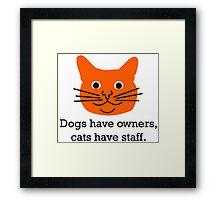 Cat staff Framed Print