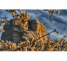 MLK Memorial Cherry Blossoms Photographic Print