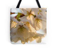 Cherry Blossoms Closeup Tote Bag