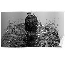 Monochrome Splash Poster