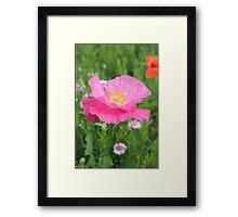Tilted Pink 512 Framed Print