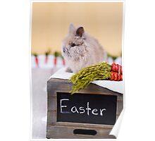 Give somebunny a hug this Easter!  Poster