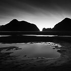 Black Tidal by Peter Denniston