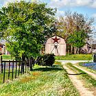 Springtime Along a Texas Rural Road by venny