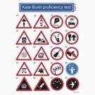 Kate Bush Proficiency Test (Part II) by GaffaUK
