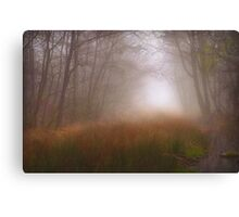 Trees Mist 1 Canvas Print