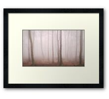 Trees Mist 2 Framed Print