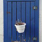 blue window by habish