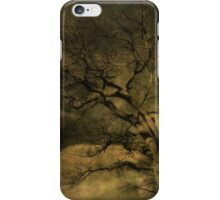 Tod's Point Jan 2014 Tree Series 1 iPhone Case/Skin