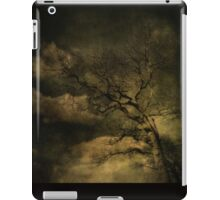 Tod's Point Jan 2014 Tree Series 1 iPad Case/Skin