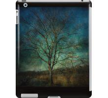 Tod's Point Jan 2014 Tree Series 2 iPad Case/Skin