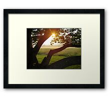 Foggy Sunrise at Bull Run Framed Print