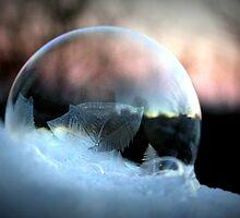 Frozen Bubble 321 by Cecilia Carr