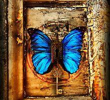 Blue Butterfly Keyhole by shaunaknight