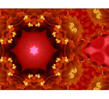 Kaleidoscopic Garden 20 Photographic Print