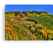 Vail Colorado fall trees scenic print Canvas Print