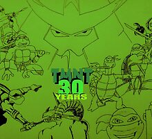 TMNT30 2 by wil2liam4