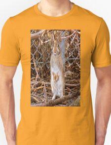 Honey Bunny T-Shirt