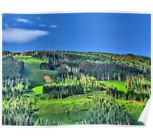 Vail Colorado vivid green summertime print Poster