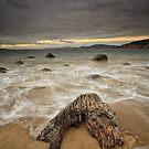 Taroona Beach Sunrise, Tasmania #16 by Chris Cobern