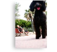 The Poodle and its Master Canvas Print