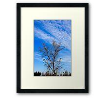 49 clouds Framed Print