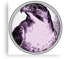 Round Bird 60 Canvas Print
