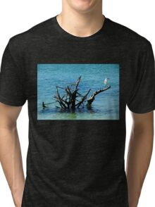 Snowy Perched On Driftwood Tri-blend T-Shirt
