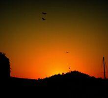 sunset by habish