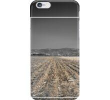 Framed iPhone Case/Skin