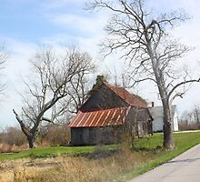 SOUTHERN INDIANA BARN by Pauline Evans