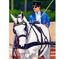 Pleasure Driving Quarter Horse Photographic Print