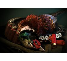 Prize Pheasant Photographic Print