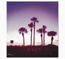 Trippy Orlando Beach Sunset by oneshadeofgrey
