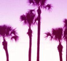 Trippy Orlando Beach Sunset Sticker