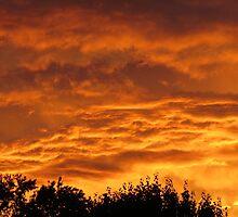 Sunset by virginian