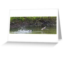 Mallard Chase Greeting Card