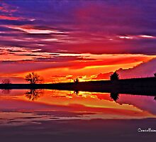 Prairie & Pond Sunset by Connie Smith