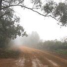 Rain and fog by julie anne  grattan