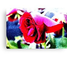 Colourful Rose Canvas Print
