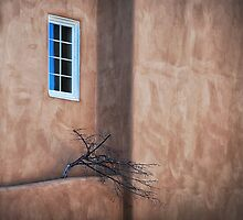 Unexpected Places... by charlena