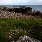 Sligo, Ireland by Marg Thomson Photography
