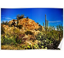 Saguaro National Park East Poster