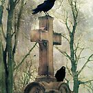 Urban Graveyard Crows by gothicolors