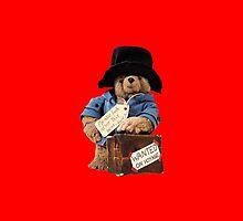 Paddington Bear by Wildster