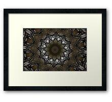 Woodland Web Framed Print
