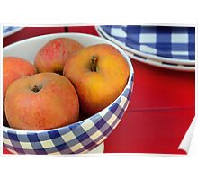 Apples in blue and white bowl Poster